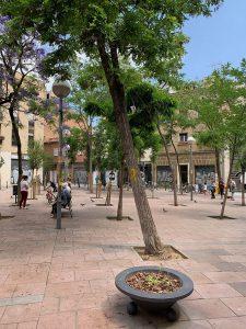 People and trees at Barcelona's Placa de John Lennon