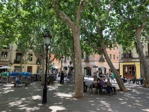 People relaxing among the trees on benches at Barcelona's Plaça de Rovira i Trias.