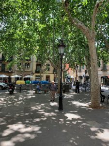 A light post and pedestrian Barcelona's Plaça de Rovira i Trias.