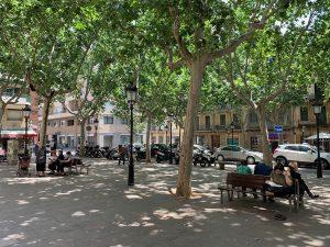 People on the benches beside Barcelona's Plaça de Rovira i Trias.