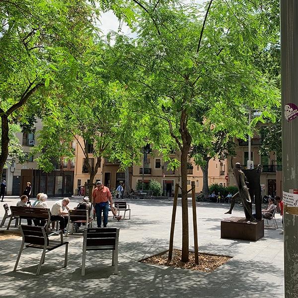 Plaça del Diamant during the day